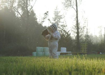 Beekeeper Ted Mcfall cultivates Local Natural Organic Honey Pure Raw Local Honey near Bellingham WA