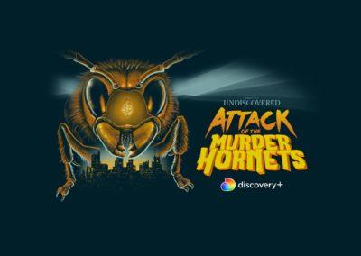Attack of Murder Hornets on honey bees at McFall Beeyard